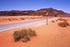 (louis de champs) Tags: minoltasrt101 film agfaprecisa100 vividcolors desert redsand mountains road camels wadirum jordan