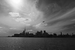 looking west at Toronto (theharv58) Tags: torontocanada torontowaterfront waterfrontactivity canoneos60d canon60d tokina1224mm tokinaatxpro1224f4ifdx