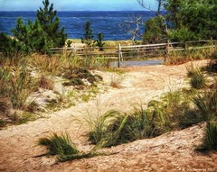Dunes and walkway overlooking the Atlantic, Cape Henlopen State Park DE (PhotosToArtByMike) Tags: capehenlopenstatepark fence digitalpainting digitalart sanddunes beachgrass lewes delaware de atlanticocean sussexcounty sand beach seascape