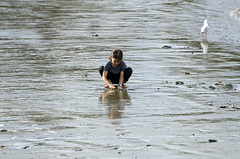 Girl and bird (MJField) Tags: devonport girl beach seagull