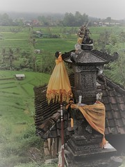shrine at Jatiluwih (SM Tham) Tags: asia southeastasia indonesia bali island jatiluwih riceterraces unescoworldheritagesite shrine parasol umbrella cloth roof rooftiles landscape mist village outdoors culture religion