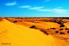 Djerba 2010 115 (Elisabeth Gaj) Tags: elisabethgaj tunisia afryka travel landscape natur nature