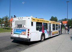 CT_7659_D40LF_Info Bus (Shahid Bhinder) Tags: mypictures transport transit newflyerbuses calgarytransit d40lf