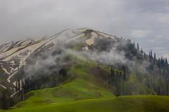 Makra Peak (mimalkera) Tags: kaghanvalley naran kaghan shogran siripaye payemeadows lakesaifulmalook travelpakistan travelbeautifulpakistan travel wanderlust makrapeak greenery nature snow