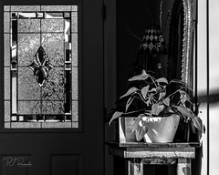 Entry (PJ Resnick) Tags: 2017 pjresnick perryjresnick pjresnickgmailcom pjresnickphotographygmailcom ©2017pjresnick ©pjresnick light fuji fujifilm highspeediso noir atmosphere atmospheric digital shadow texture shadows rectangle wa washington angle perspective naturallight xf fujinon aroundthehouse rectangular resnick cascadefairwood wall minimalism minimalist highiso minimal simple 4x5 fujinon55200 monochrome mono blackwhite bw monochromatic 55200mm fuji55200 acrosg