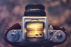 Chiemsee Sunset (der_peste) Tags: pentacon pentaconsix middleformat biometar2880 sonya7ii sel35f14z 35mm f14 sunset viewfinder waistlevelviewfinder vintage vintagecamera pictureinpicture colors ducks sunrise sundown lake silhouettes