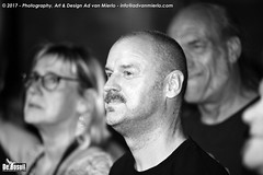 2017 Bosuil-Het publiek bij Hoodoo Monks en The Red Devils 13-ZW