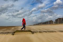 Follow Me (Philippe Clabots (#PhilippeCPhoto)) Tags: philippecphoto nature beaufort belgie belgique belgium coxyde flandres koksijde météo philippec tempête vent westvlaanderen westhoek