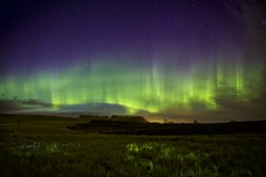 May 17 Aurora at twilight (John Andersen (JPAndersen images)) Tags: alberta aurora clouds madden meteor milkyway night panorama pond silhouettes trees two272