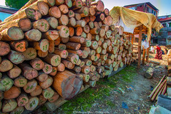 Lady Wood. (Shahnewaz_Khan) Tags: art nature bangladesh landscape canon canon60d landscapephotography landscapephoto catchy canon1022 catchycolors naturephotography fav canonlens canonphotography canonphotos naturelovers daylight beautiful beauty beautifulbangladesh beautifulnature colors colorful dramatic hdr wide wideangle wideanglephotography outdoor wood flickr picoftheday colorfullpicture green igworlclub heaven hotshotz photographersofbangladesh photography concept conceptual conceptualphotography conceptphoto composition view scene