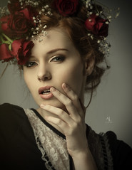 Lillian red rose (1 of 1) by anla2011 -