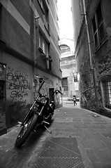 Chopper (Dedalomouse Photos) Tags: genova liguria italia italy europa europe street streetphoto strada strade città ciudad city citta calle graffiti gente tommaso tommasoolmeda travel olmeda dedalomouse moto motorcycle persone people personas bianconero bw bn chopper