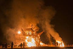 Going up in flames (Rob Millenaar) Tags: southafrica karoo tankwa afrikaburn fire yggdrasil treeoflife