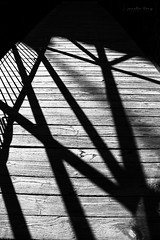 shadows 2 (Janelle Tong) Tags: janelle tong photography tony ward studio individual project upenn penn park bridges shadows wood black white