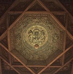 A Beautiful Ceiling (DianaHumble) Tags: nelsonatkinsmuseumofart