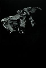 """""""Dobermann"""" (Thiago Montelli) Tags: dobermann entaglio printing printmaker xilogravura gravura cachorro fundopreto"""