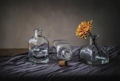 Uno con flor... (JACRIS08) Tags: stilllife glass flower