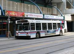 CT_7926_D40LF (Shahid Bhinder) Tags: mypictures transport transit newflyerbuses calgarytransit d40lf