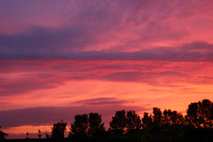 Cheshire Sunset (Eddie Crutchley) Tags: europe england cheshire outdoor beauty nature sunset silhouette sky simplysuperb