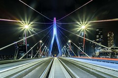In the middle (Ellen van den Doel) Tags: erasmugbridge night netherlands erasmus mei nederland cityscape evening perspective lights rotterdam 2017 5 outdoor road lijnen lines weg avondfotografie bevrijdingsdag fotografie may city avond zuidholland nl