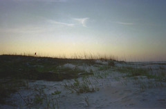 St. Augustine Sunset (dreamscapesxx) Tags: olympusxa1 fujisuperia400 35mm pointandshoot filmisgood atthebeach sunset sanddunes dunegrass beautifulevening anastasiastatepark staugustinefl