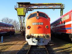 MÁV Nosztalgia M61 019 (boti_marton) Tags: máv mávnosztalgia nohab m61 class610 610 locomotive train diesel trainstation city cityscape tapolca magyarország hungary europa panasonic dmc lz20 lumix