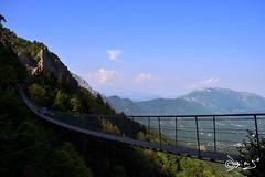 Ponte Tibetano. (Biagio ( Ricordi )) Tags: pontetibetano campogrosso vicenza recoaro pasubio montagna italy natura paesaggio piandellefugazze biagio alessandra stradadelre
