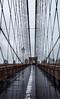 Brooklyn Bridge (just *gill) Tags: brooklynbridge newyork rain 149365