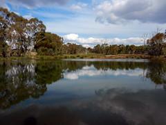 Drinking place (LeelooDallas) Tags: western australia bannister landscape tree lake forest bush sky cloud eucalyptus dana iwachow nikon s9200