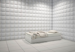 mental hospital padded room (kjo.1965) Tags: padded room psychiatric psycho cell jail isolation insanity dementia madness crazy hospital white soft interior bed insulated tratment mentalillness security institution nuthouse clean leather asylum cage mentalhospital health psychotherapy therapy wall