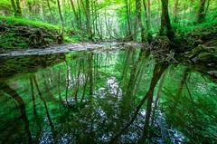 ubidea reflejos 2 (juan luis olaeta) Tags: nature naturaleza agua water rio river fujifilmxpro1 fuji photoshop reflejos brillance