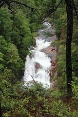 Hurricane Falls (Thomson20192) Tags: rabun county georgia 2017 gorge state park