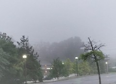 foggy morning view......2017-06-06 (wintersoul1) Tags: fog foggylandscape weather foggycityscape