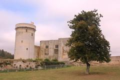 2016 10 15 036 Chateau Guilaame Le Conquerant Falaise (IoW_Sparky) Tags: falaise normandy normandie castle chateau william willem guillame canon eos 550 flag drapeau france conquérant conqueror
