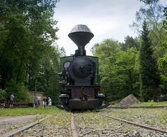 Herrenleite - 2017 (Gerd Schmidt) Tags: historischefahrzeuge herrenleite feldbahnmuseumherrenleiteherbstfahrtage2014 feldbahn museumsbahn eisenbahnmuseum dampflok krauss steam