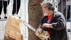 IMG_0401 (www.ilkkajukarainen.fi) Tags: helsinki suomi finland visit suomi100 eu europa scandinavia happylife museumstuff stihl moottorisaha karhu puu työ folk art ite taide chainsaw juhakäkelä chaisawartist sculpture
