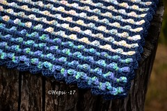 2017-05-26 033 (hepsi2) Tags: tyyne potholder kettleholder patalappu virkattu crochet
