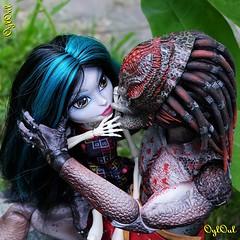 №456 (OylOul) Tags: 16 action figure hottoys predator monster high doll skelita