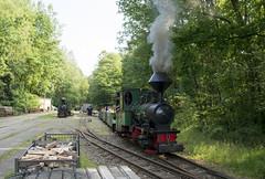 Herrenleite - 2017 (Gerd Schmidt) Tags: historischefahrzeuge herrenleite feldbahnmuseumherrenleiteherbstfahrtage2014 feldbahn museumsbahn eisenbahnmuseum krauss dampf dampflok dampflokomotiven lok