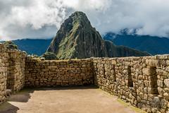Machu Picchu -_DSC0583