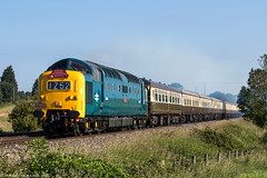 D9009 at Abbotswood (1Z52) 17.06.2017 (Wolfie2man) Tags: thewelshcentralliner d9009 55009 alycidon deltic napier dps delticpreservationsociety pathfindertours abbotswoodjunction class55