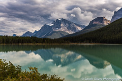 Can't resist a reflection shot! (SarahO44) Tags: 6d alberta banff canada canon icefields lake mountains national park parkway reflection waterfowl landscape outdoors snow capped snowcapped