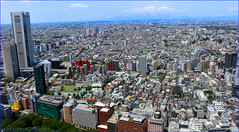 Turning Japanese` (roll the dice) Tags: japan japanese asia fareast yen view high canon tourism tourist miniature mountfuji mad surreal tokyometropolitangovernmentbuilding tochō kenzotange shinjuku city tokyo architecture tower sunny hot weather shintu 東京都庁 observatory soshi ramen shinto