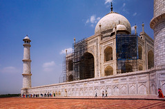 ON A CLEAR DAY (emmett.hume) Tags: perspective india taj tajmahal agra architecture mausoleum shrine mogul worldheritage unesco proportion scale diagonal asia art burial tomb marble stone dome renovation repair wondersoftheworld minaret tower terracotta terrace clearday reconstruction building islam religion people angle antiquity arch scaffolding scaffold mosaic