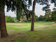 Broadwater Golf Course-6191397 (tony.rummery) Tags: broadwater em10 eveningsun fairway farncombe flag godalming golf green mft microfourthirds omd olympus pin surrey surreyhills england unitedkingdom gb