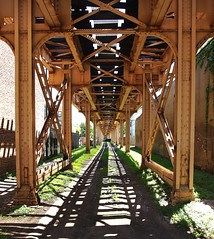 Under the Green Line (Brule Laker) Tags: chicago illinois southside washingtonpark
