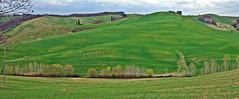 Verdi colline sulla Via Francigena in Toscana - Green hills on the Via Francigena in Tuscany (Jambo Jambo) Tags: pontedarbia monteronidarbia buonconvento siena toscana tuscany panorama landscape colline hills collinesenesi italia italy sonydscrx100 jambojambo serravalle