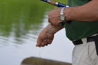La pêche à la ligne ou l'art de la patience...