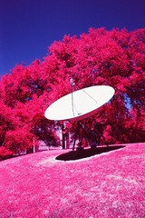 LBJ Dish Infrared (infobong) Tags: austin infrared infraredfilm colorinfrared colorinfraredfilm utexas utaustin