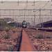 Nijmegen Stichting Hondekop treinstel 766 drieluik